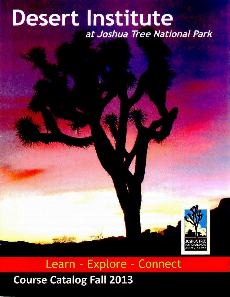 131124 案内5:ジョシュア・ツリー国立公園