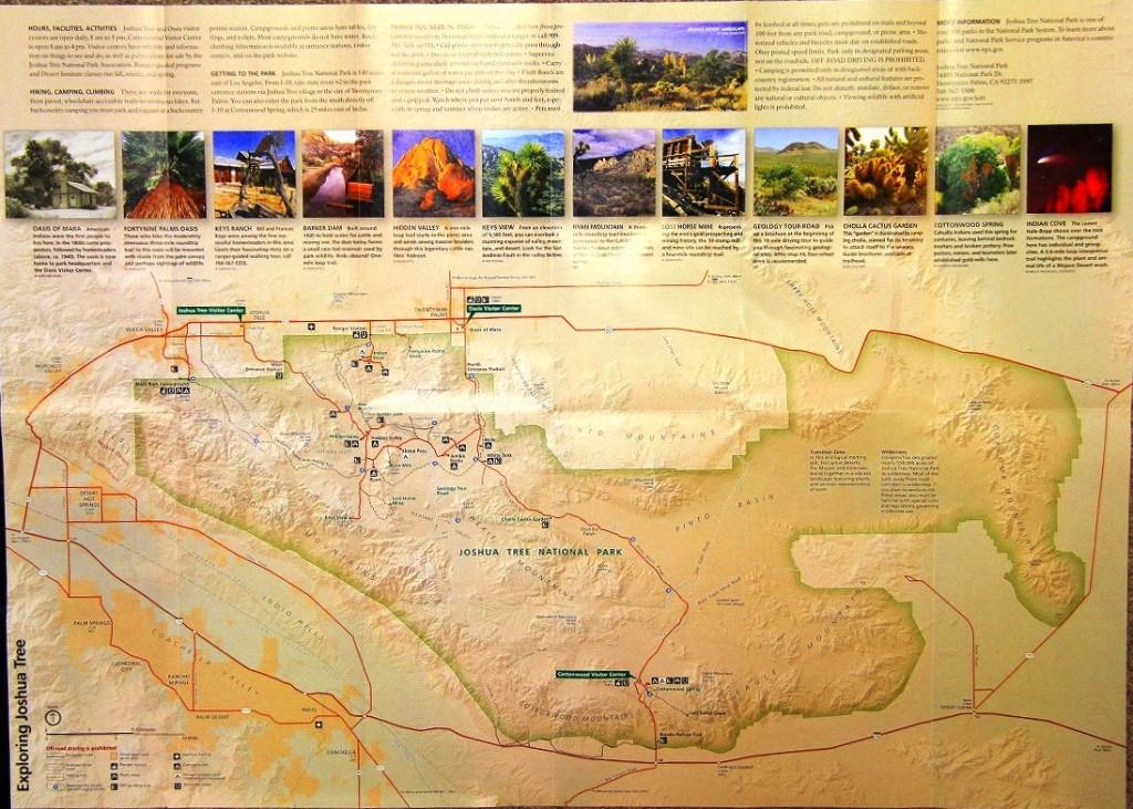 131124-1 案内2:ジョシュア・ツリー国立公園