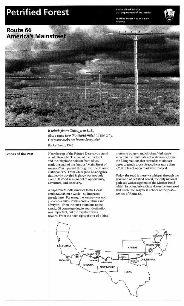 石化木国立公園6-1